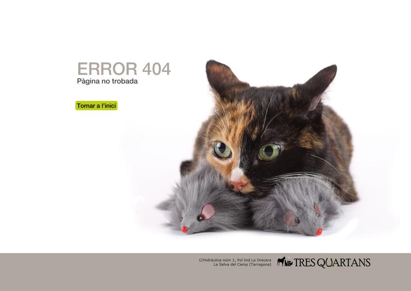 06_error404